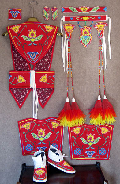 Ladies Fancy Shawl Dance Set